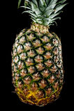 Pineapple isolated on black. Pineapple fruit isolated on black background royalty free stock photography