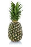 Pineapple fruit isolated on white Royalty Free Stock Image