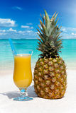 Pineapple fruit and juice on the beach Stock Photography