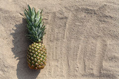 Pineapple fruit lying on a beach sand, empty copy space background Stock Photo