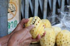 Pineapple fruit Stock Photography