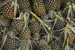 Pineapple fruit market in thailand , It's more palatable. The pineapple fruit market in thailand , It's more palatable royalty free stock image