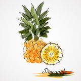 Pineapple fruit and pineapple slice Stock Photo