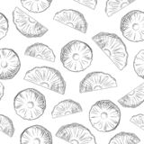 Pineapple fruit slices sketch seamless pattern. Exotic tropical fruit backdrop royalty free stock photography