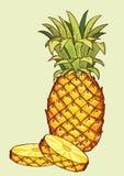 Pineapple fruit Stock Photo