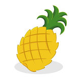 Pineapple Fruit. Vector illustration of a pineapple fruit Stock Photo