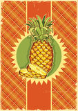 Pineapple fruit on vintage label background on old Royalty Free Stock Photography