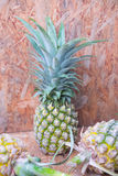 Pineapple fruit on wood table Royalty Free Stock Photos