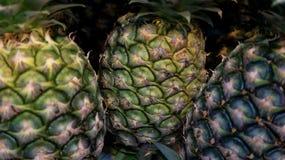 Pineapple fruits, closeup and selective focus. stock image