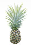 Pineapple. Green isolate white background Royalty Free Stock Photography