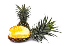 Pineapple Royalty Free Stock Photos