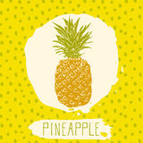 Pineapple hand drawn sketched fruit with leaf on blue background with dots pattern. Doodle vector pineapple for logo, label, brand Stock Images