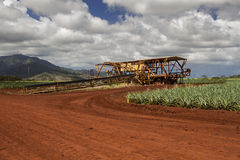 Pineapple harvest machine. Old harverst machine use for on a pineapple farm Stock Photos