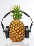 Pineapple in headphones Royalty Free Stock Photo