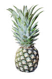 Pineapple. Healthy food with isolated background Stock Image