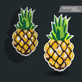 Pineapple icon. Pineapple vector label. Royalty Free Stock Photos