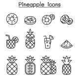 Pineapple icon set in thin line style royalty free illustration