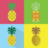 Pineapple icons set - Different styles of colorful flat designs Royalty Free Stock Image