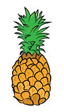 Pineapple illustration Stock Image