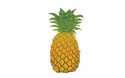 Pineapple illustration. Pineapple on white Background, illustration Stock Photography