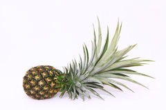 Pineapple. Isolate on white background Royalty Free Stock Photos