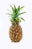 Pineapple isolate white background Stock Images
