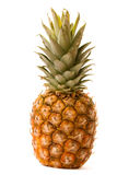 Pineapple isolated. Ripe pineapple isolated on white Royalty Free Stock Images