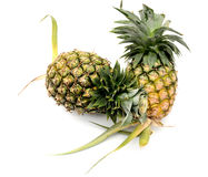 Pineapple isolated Stock Images
