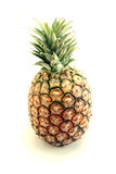 Pineapple isolated. A ripe pineapple isolated on white background royalty free stock photos