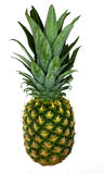 Pineapple isolated Royalty Free Stock Photo