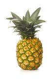 Pineapple. Isolated Pineapple isolated on white Royalty Free Stock Photography