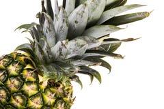 Pineapple isolated Stock Photos