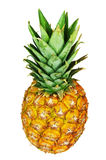 Pineapple isolated on white. Whole sweet pineapple isolated on white background Stock Image