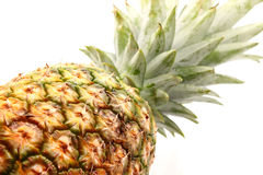 Pineapple Isolated on White Royalty Free Stock Images