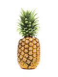 Pineapple isolated on white background Stock Photos