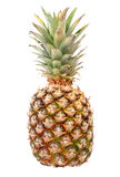 Pineapple. Isolated on white background Stock Photos