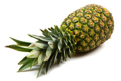 Pineapple isolated Royalty Free Stock Image