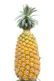 Pineapple isolated. Stock Image