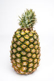 Pineapple isolated on a white background. Stock Photography