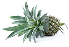 Pineapple isolated on white background Royalty Free Stock Photo