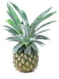 Pineapple isolated on white background Stock Photography