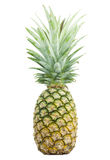 Pineapple isolated on white background Royalty Free Stock Photos