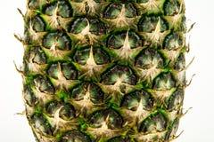 Pineapple isolated on white background. Summer fruit Royalty Free Stock Image