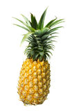 Pineapple isolated 1 Stock Images