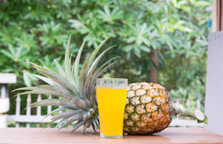 Pineapple juice in glass  with fresh fruits Royalty Free Stock Photos
