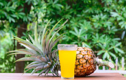 Pineapple juice in glass  with fresh fruits Royalty Free Stock Photo