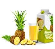 Pineapple juice set Stock Photography