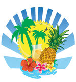 Pineapple juicy Stock Photography