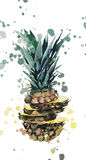 Pineapple. Juicy pineapple with watercolor spray Stock Photo