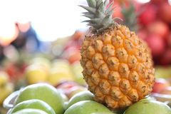Pineapple A kind of fruit food stock photo